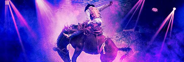 imagen boletos Houston Livestock Show And Rodeo