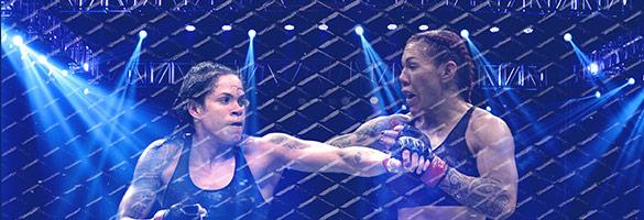Ingressos UFC 232