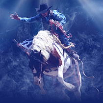 imagen boletos houston rodeo
