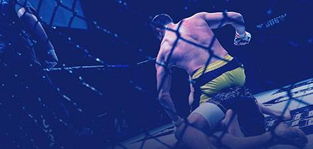 Ingressos UFC 230